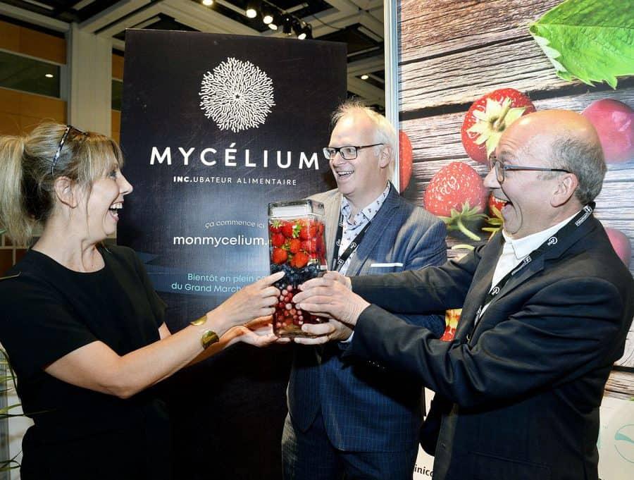 Mycelium au cœur de l'innovation alimentaire